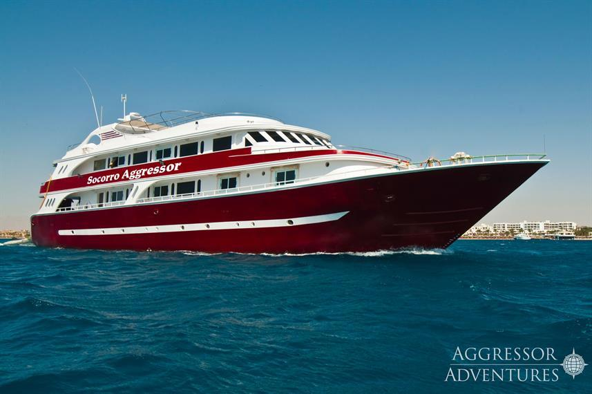 Best Liveaboards Dive Trips in Mexico6