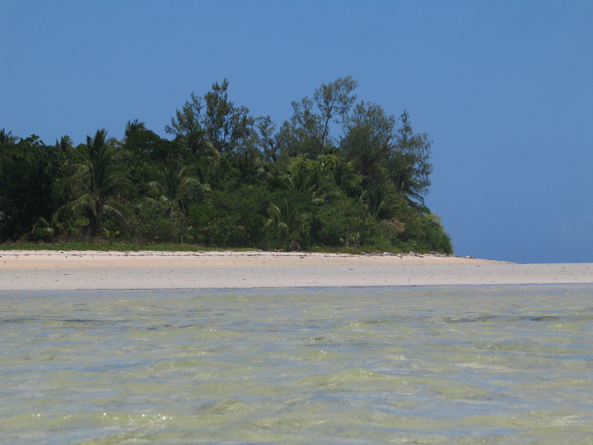 Popular Islands for Camping in the Philippines5