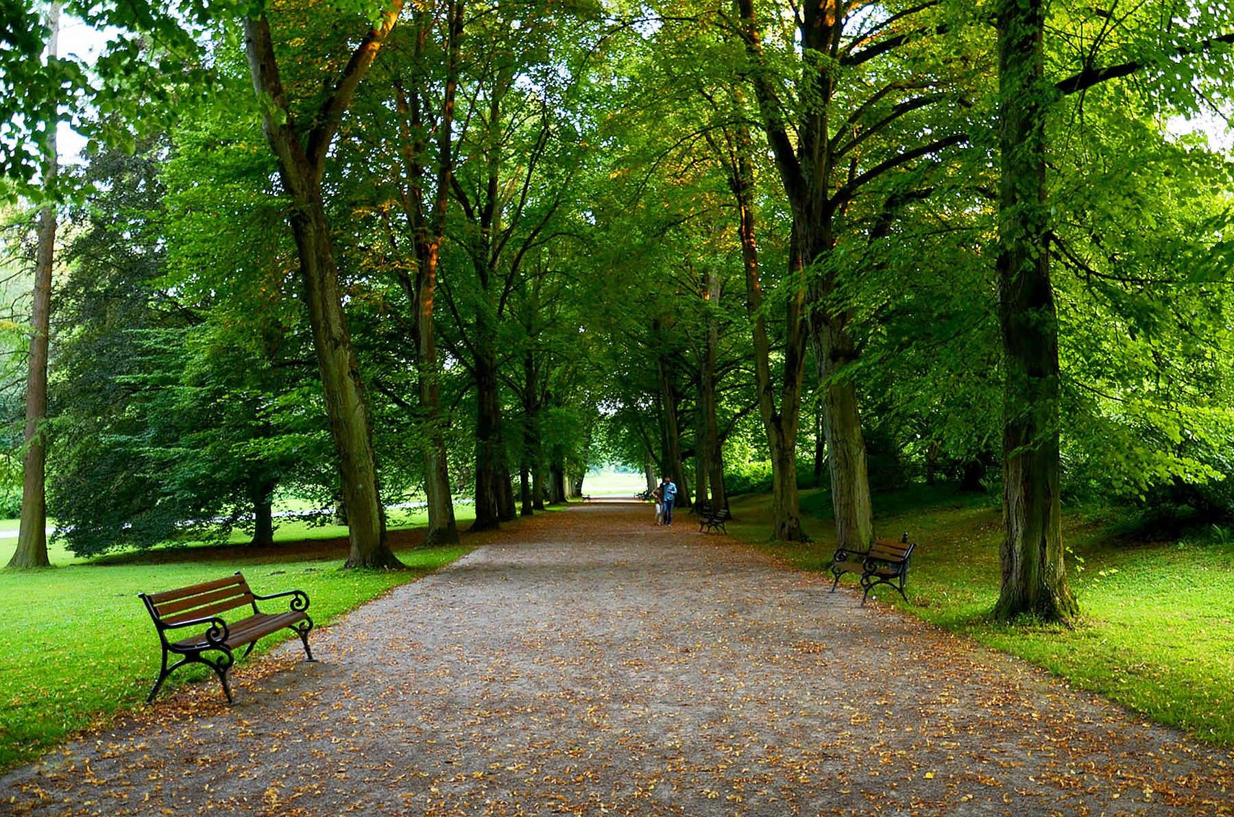 15 Best Things To Do in Dortmund, Germany
