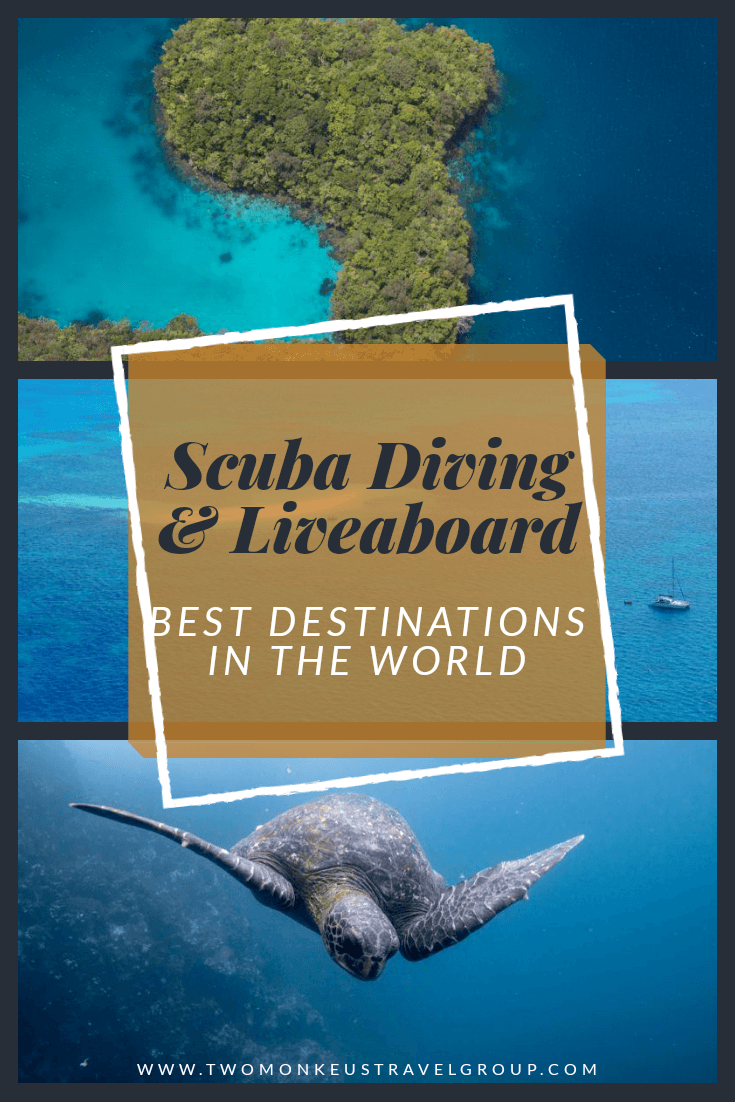 20 Best Scuba Diving & Liveaboard Destinations In The World