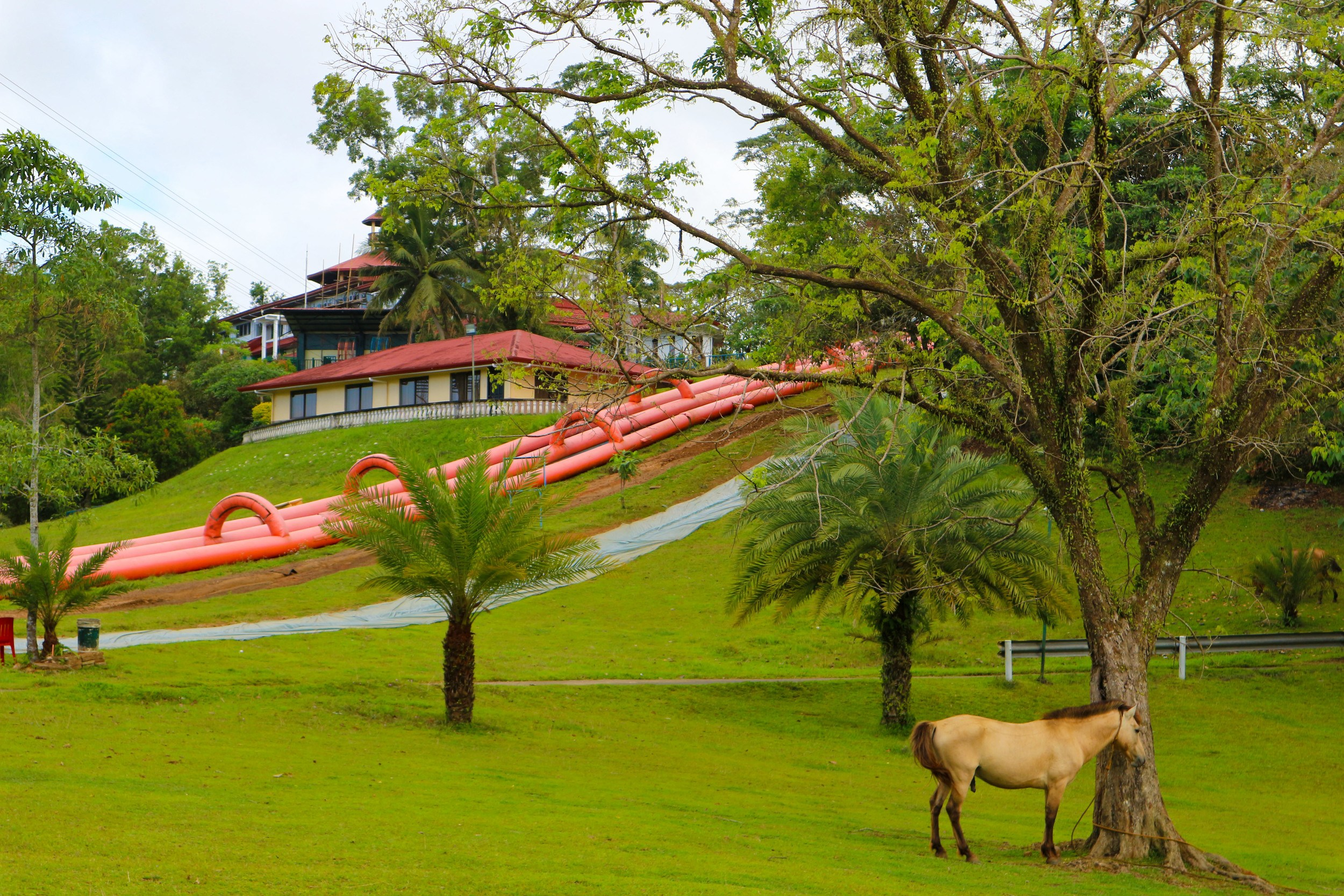 Caliraya Resort Club Your Perfect Summer Getaway in Laguna6