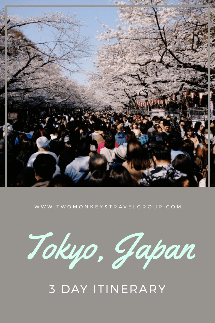 My 3 Day Tokyo, Japan Itinerary The Best Things to Do on a Weekend Trip!