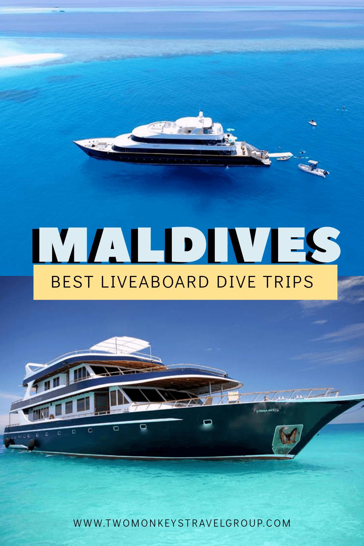 Best Liveaboard Dive Trips in Maldives