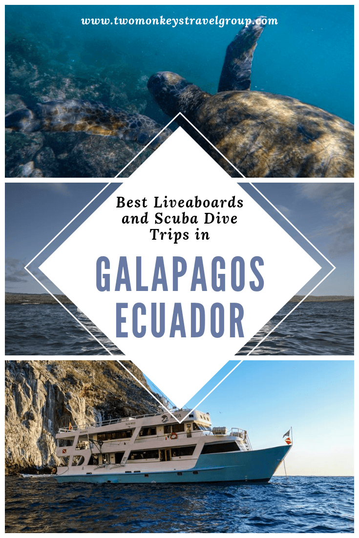 Best Liveaboards and Scuba Dive Trips in Galapagos, Ecuador