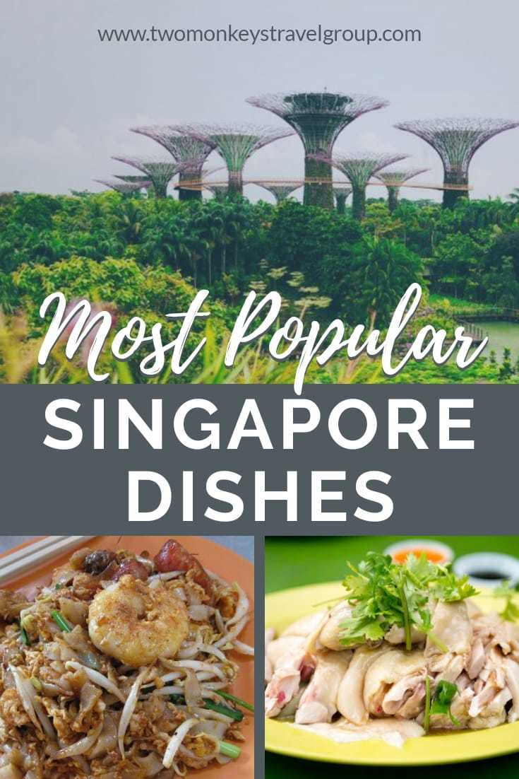 Singaporean Food' 10 of the Most Popular Singapore Dishes