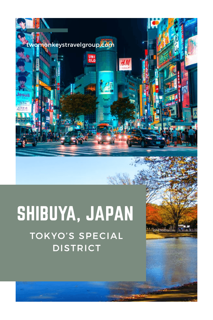 Things To Do in Shibuya, Japan - Tokyo's Special District