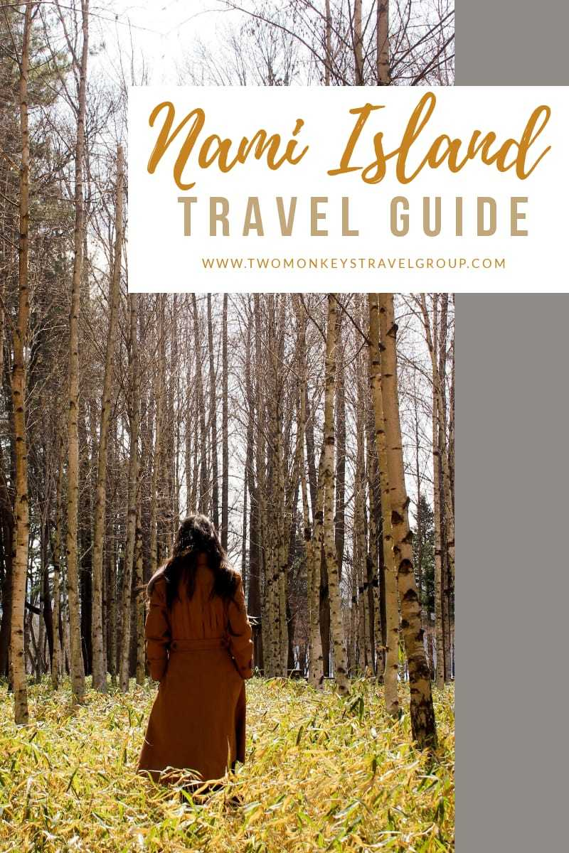 Travel Guide to Nami Island, South Korea How to Go & What to Do1