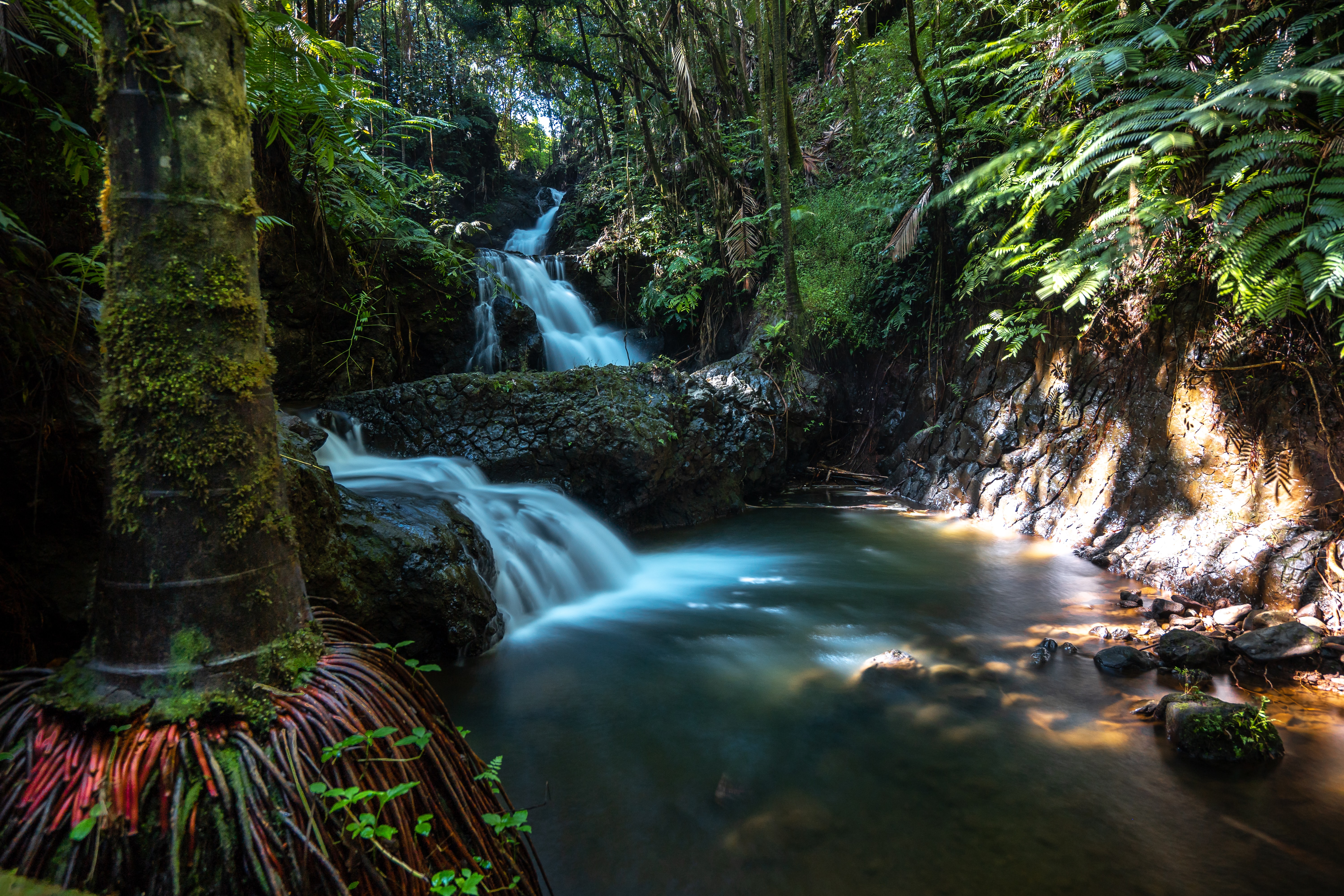 15 Things to do in Hilo, Hawaii12