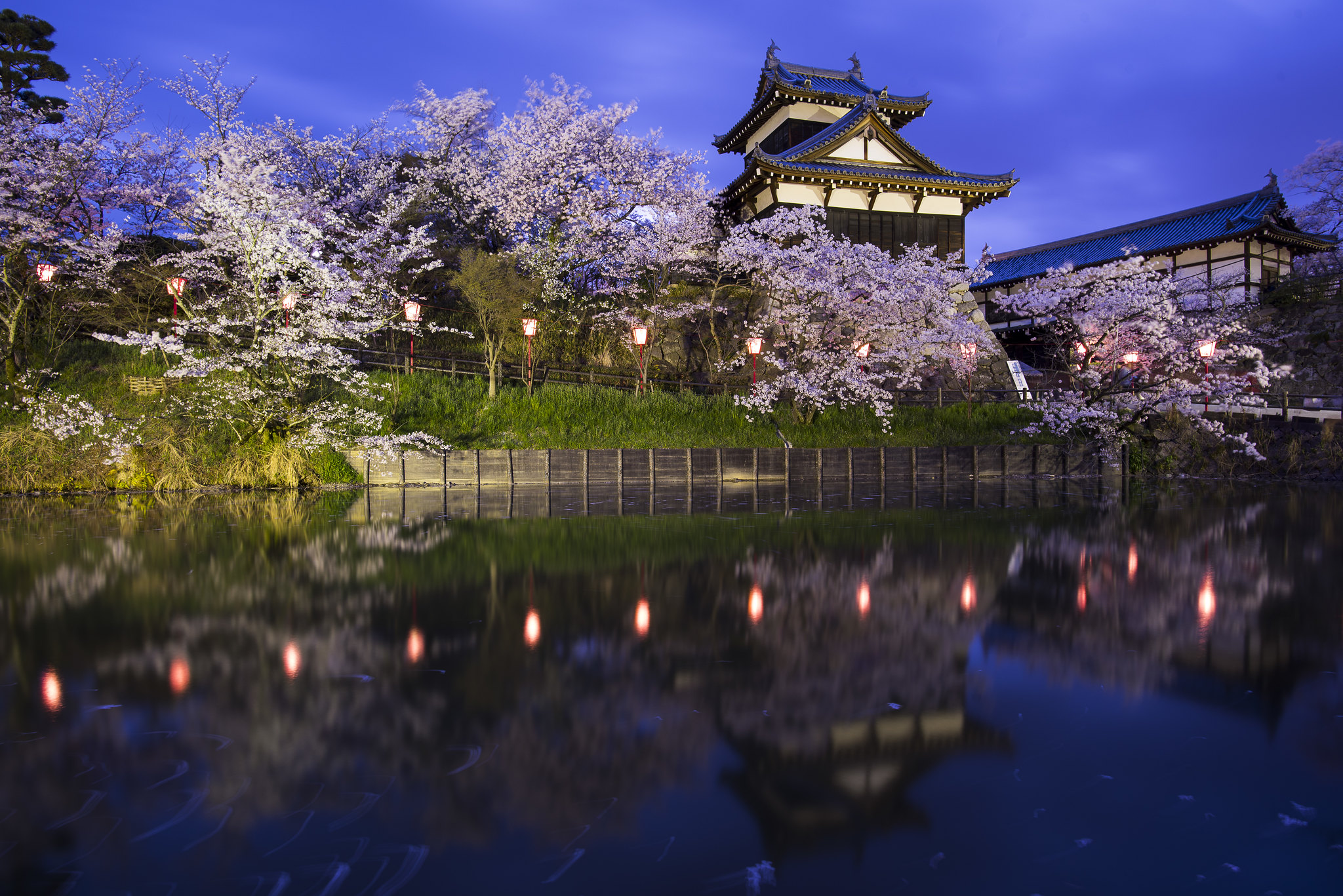 Best Cherry Blossom Viewing Spots All Over Japan