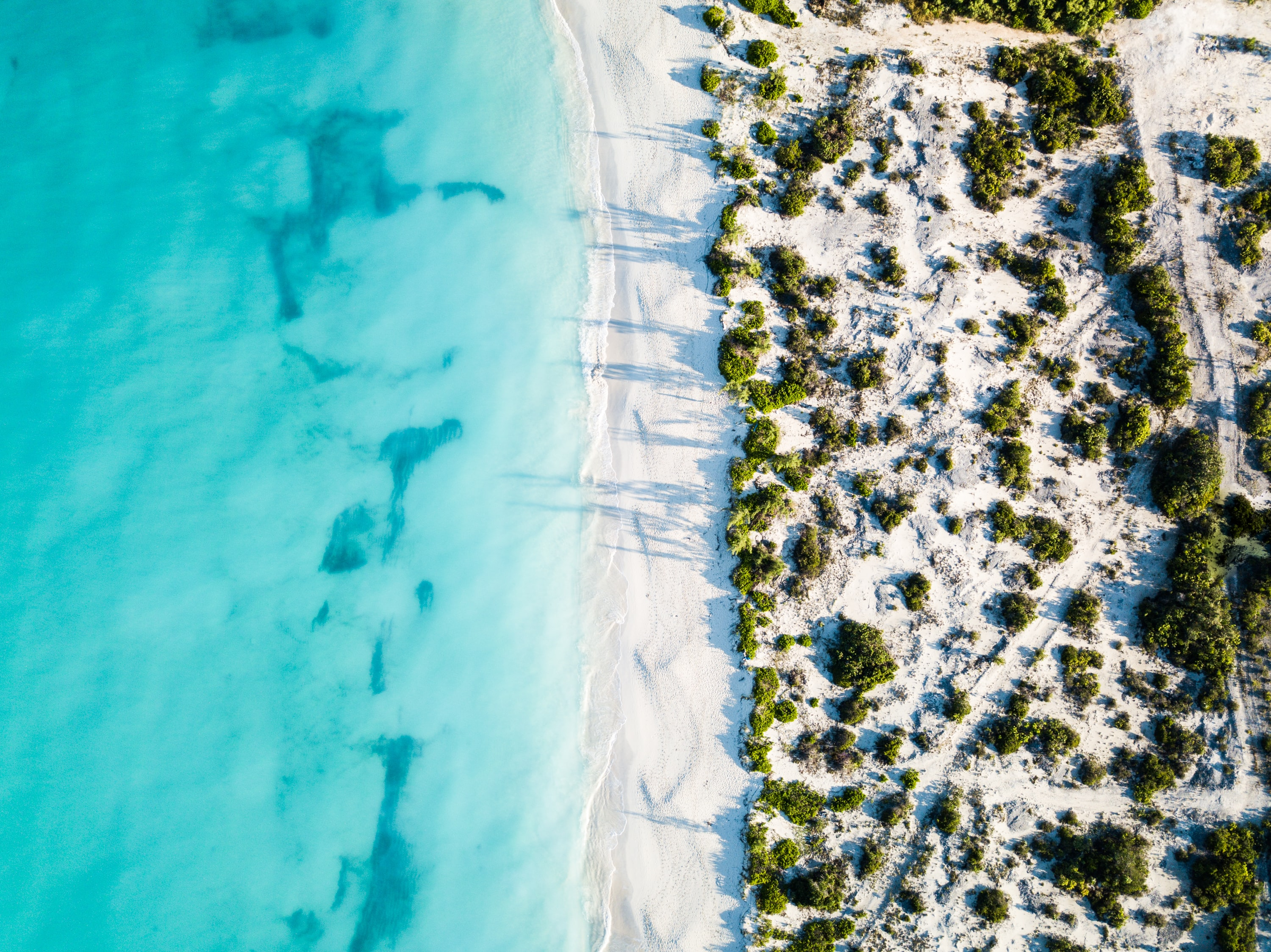 Best Local Food in Turks and Caicos
