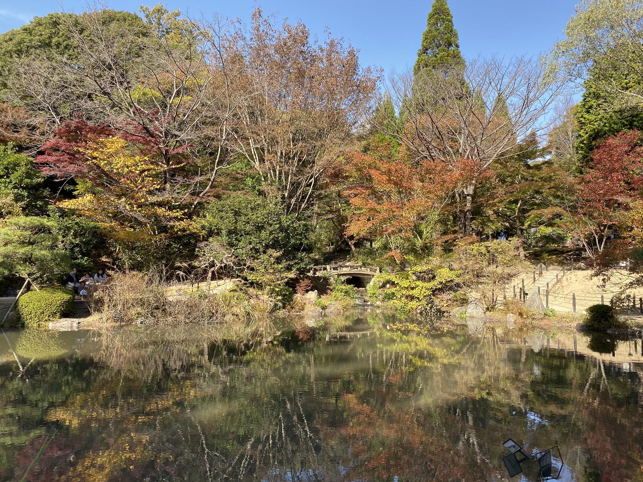 Best Things to Do in Nagoya, Japan