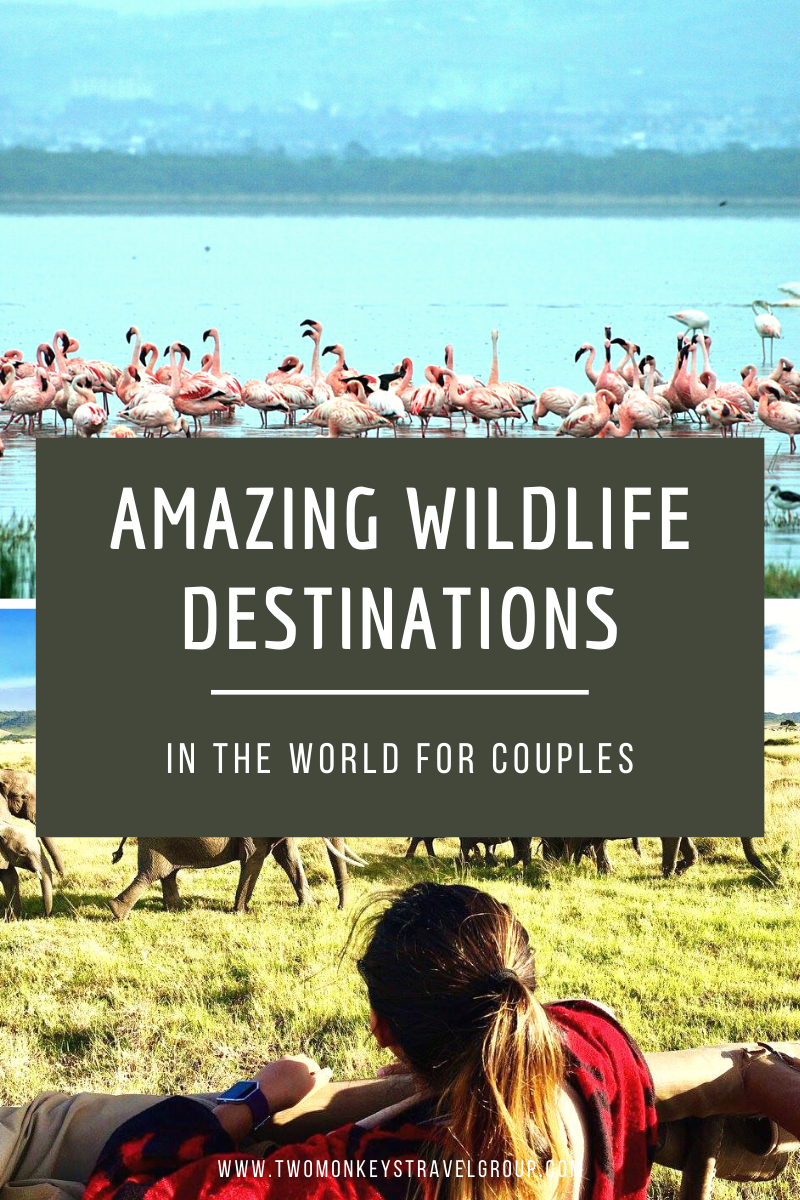 14 Most Amazing Wildlife Destinations in the World for Couples