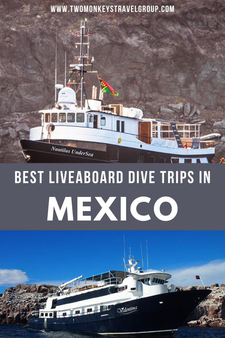 The 6 Best Liveaboard Dive Trips in Mexico [From Budget to Luxury Boat]