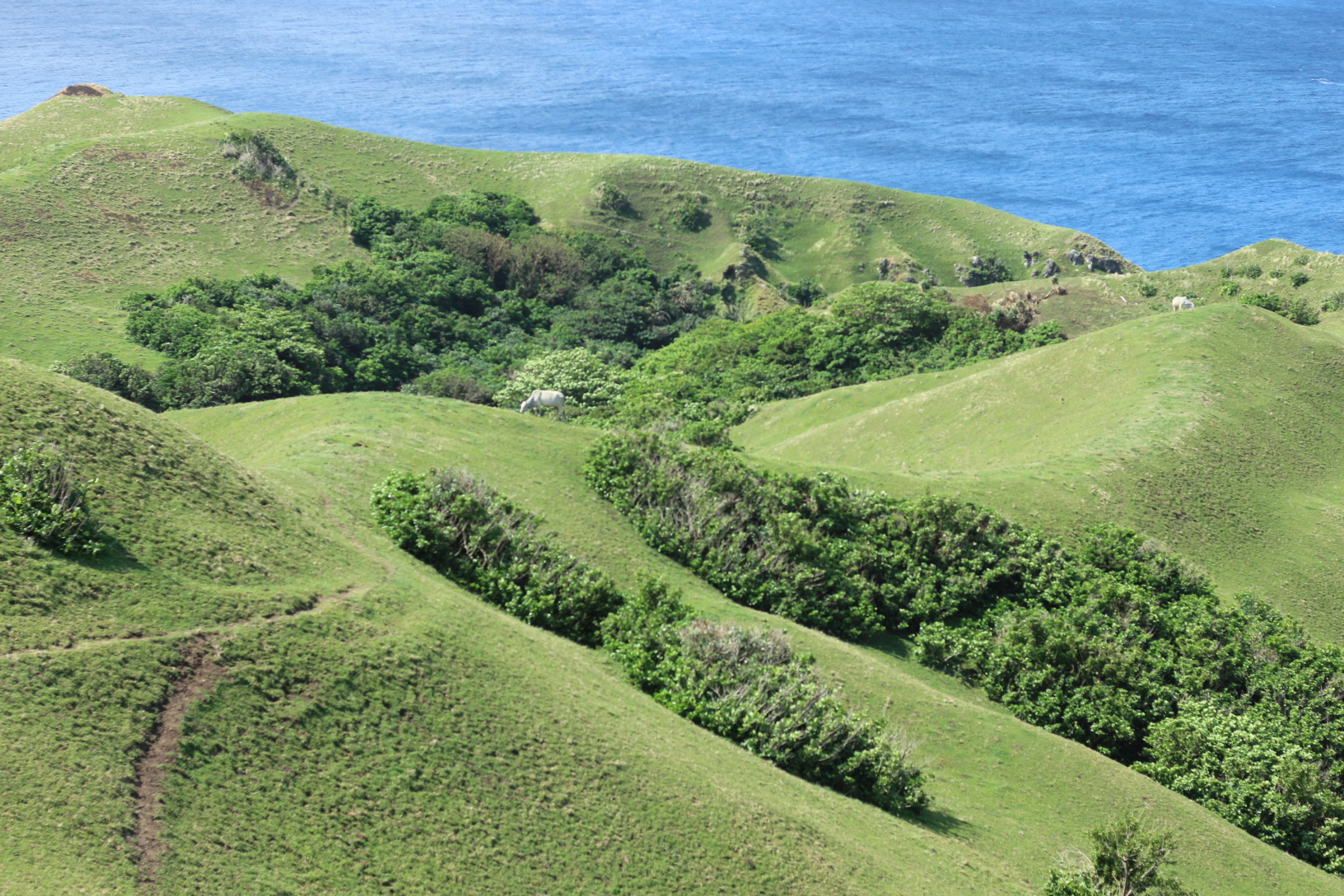 Travel Guide to Batanes, Philippines [with Tips and FAQs]