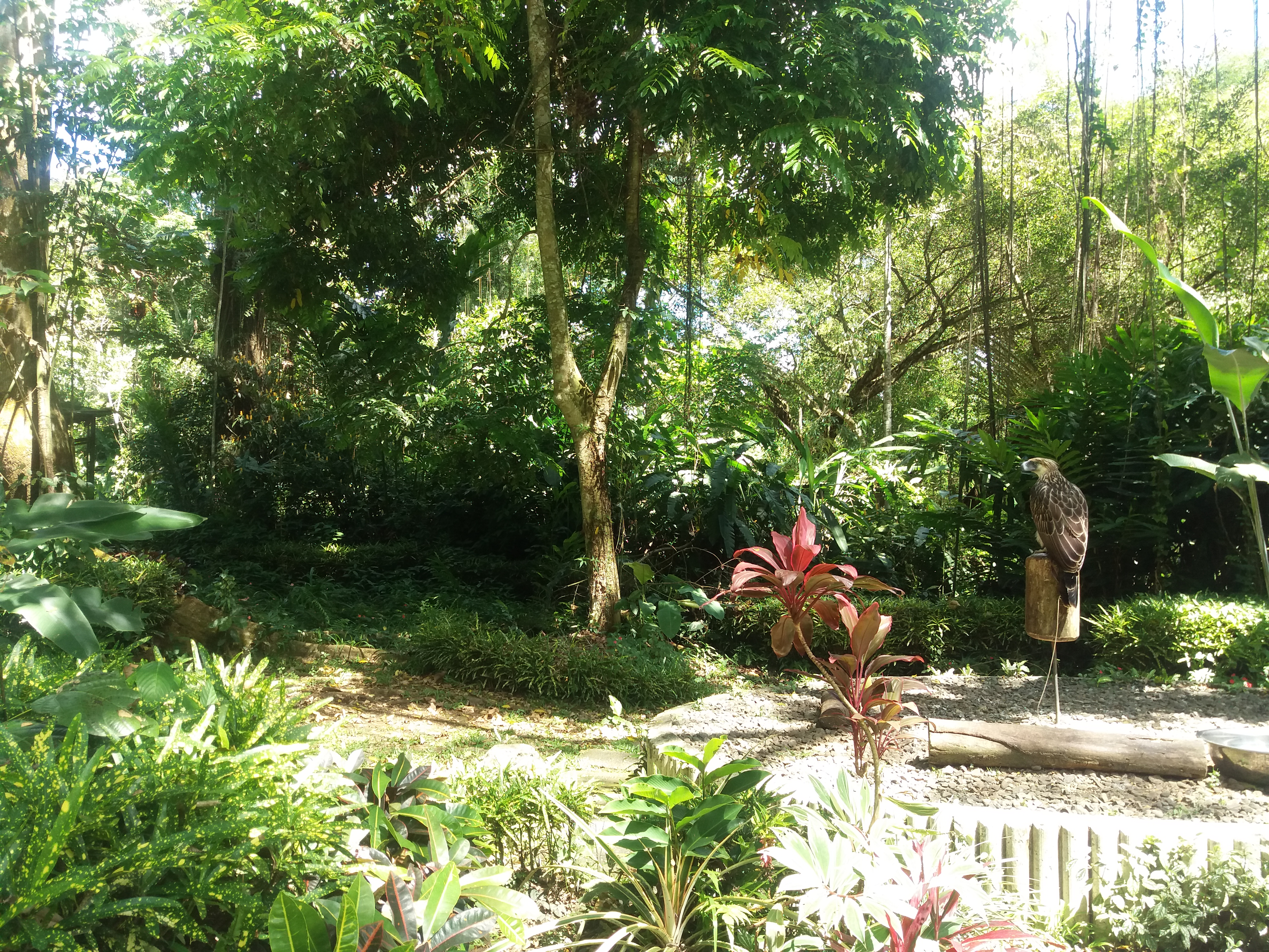5 Parks to Visit in Davao City, Philippines (Things to do in Davao City) 03