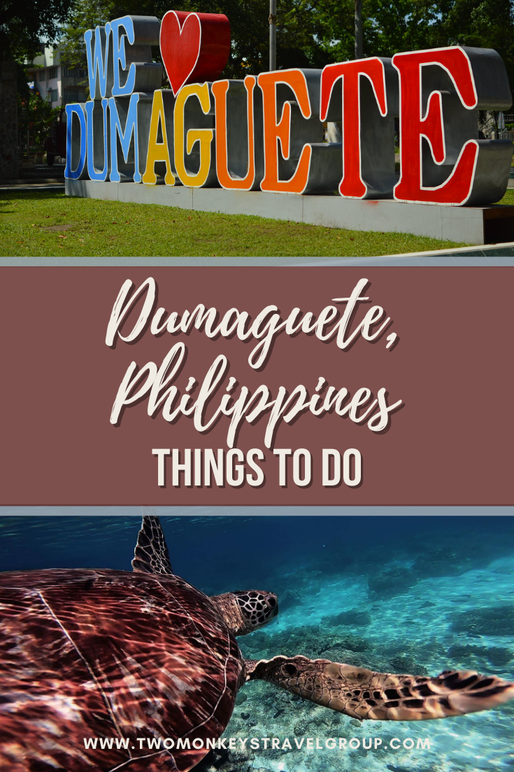 5 Things to Do near Dumaguete, Philippines [Nature Spots]