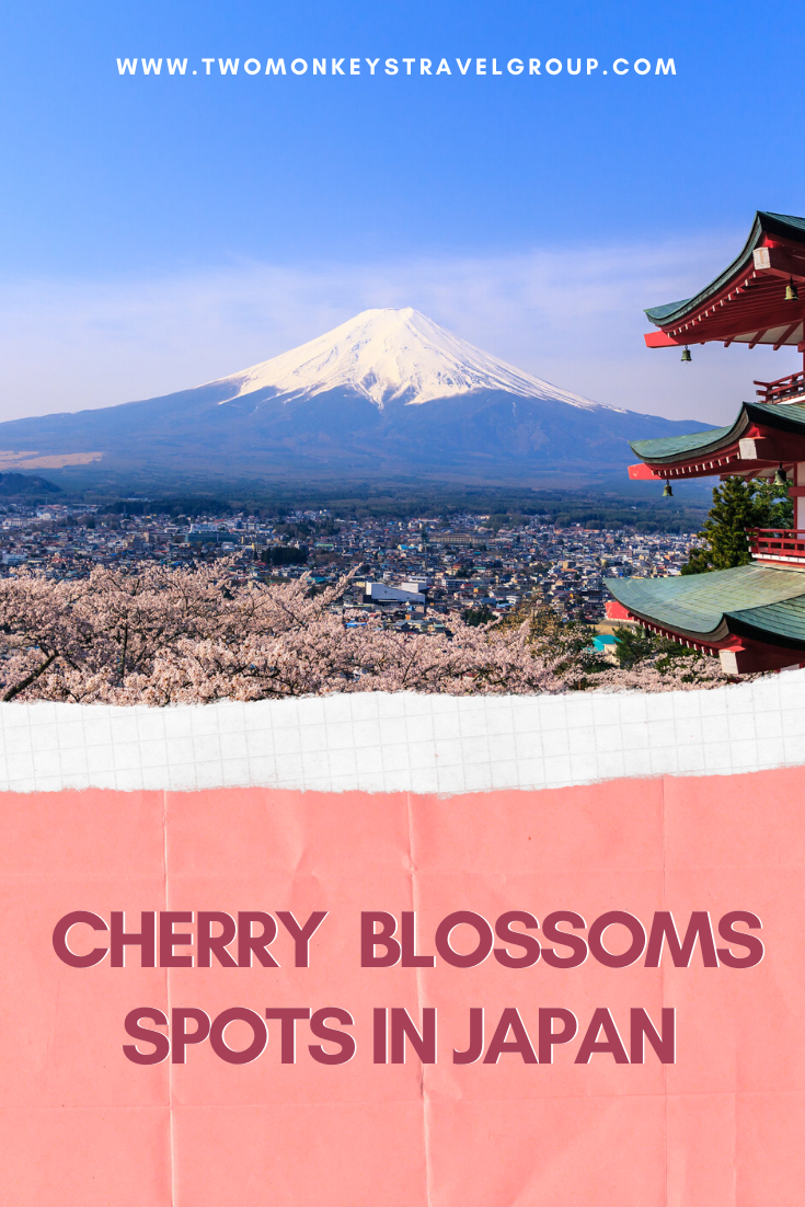 Top 32 Cherry Blossoms Spots In Japan [Best Viewing Spots For Sakura Watching in Japan]