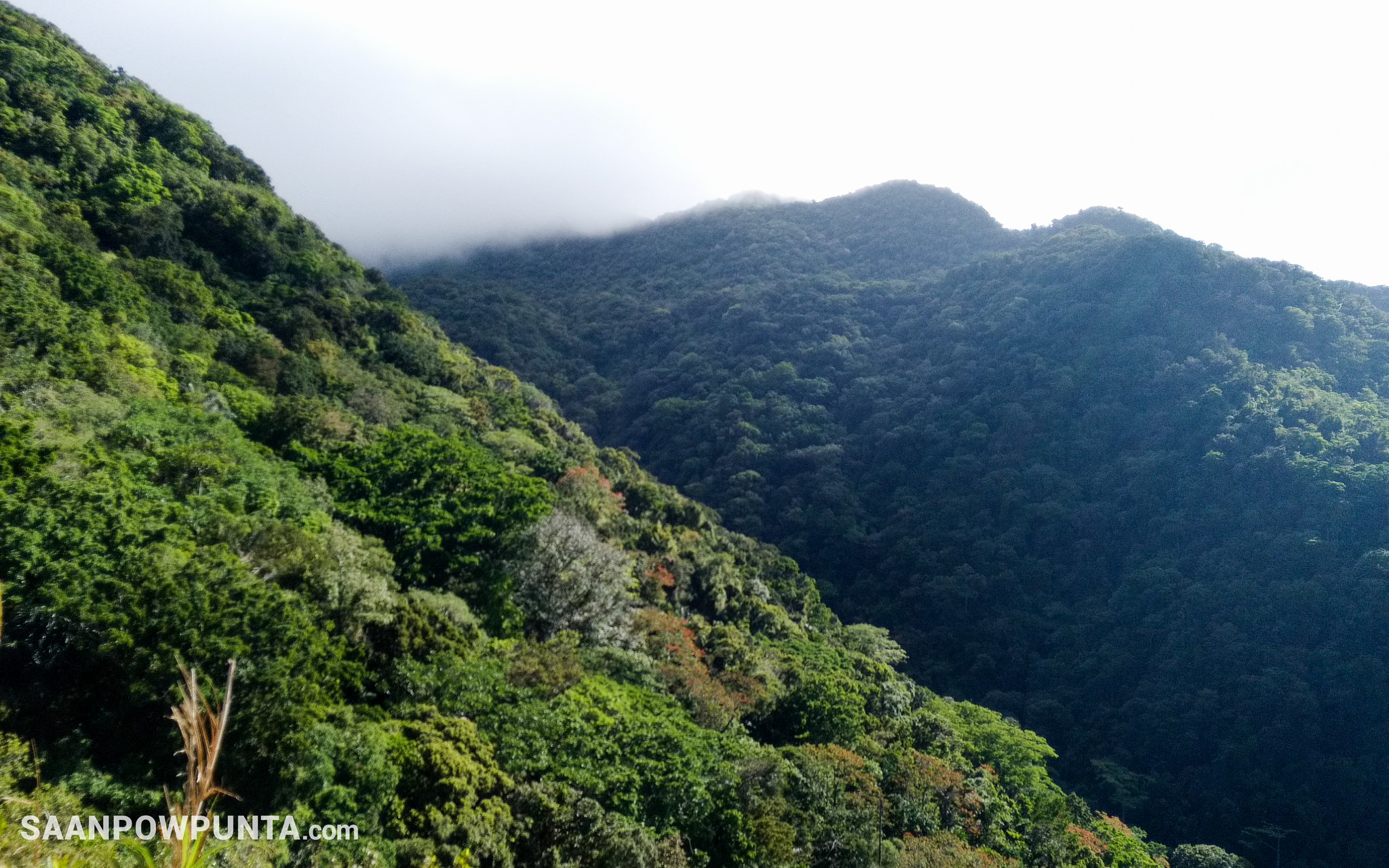 Travel Guide to Mt. Makiling, Los Baños, Laguna, Philippines