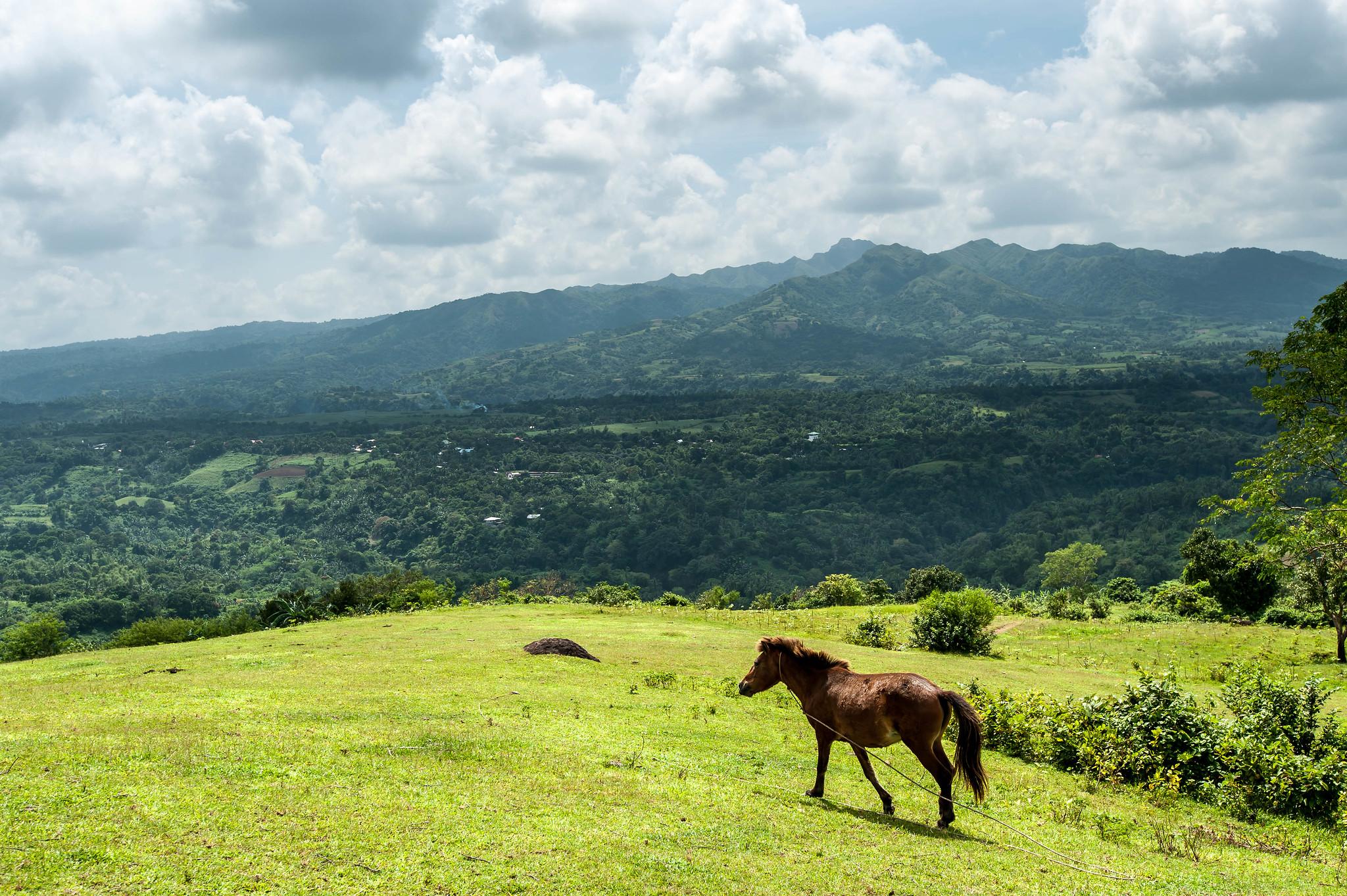 Travel Guide to Mt. Talamitam, Nasugbu, Laguna, Philippines