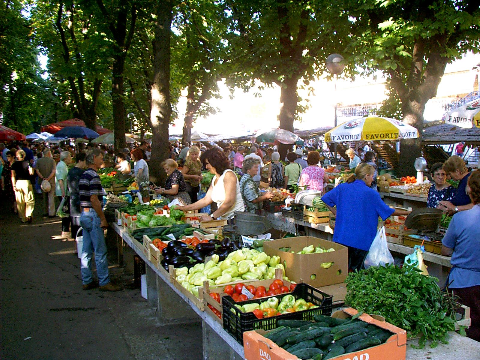10 Best Things to do in Pula, Croatia