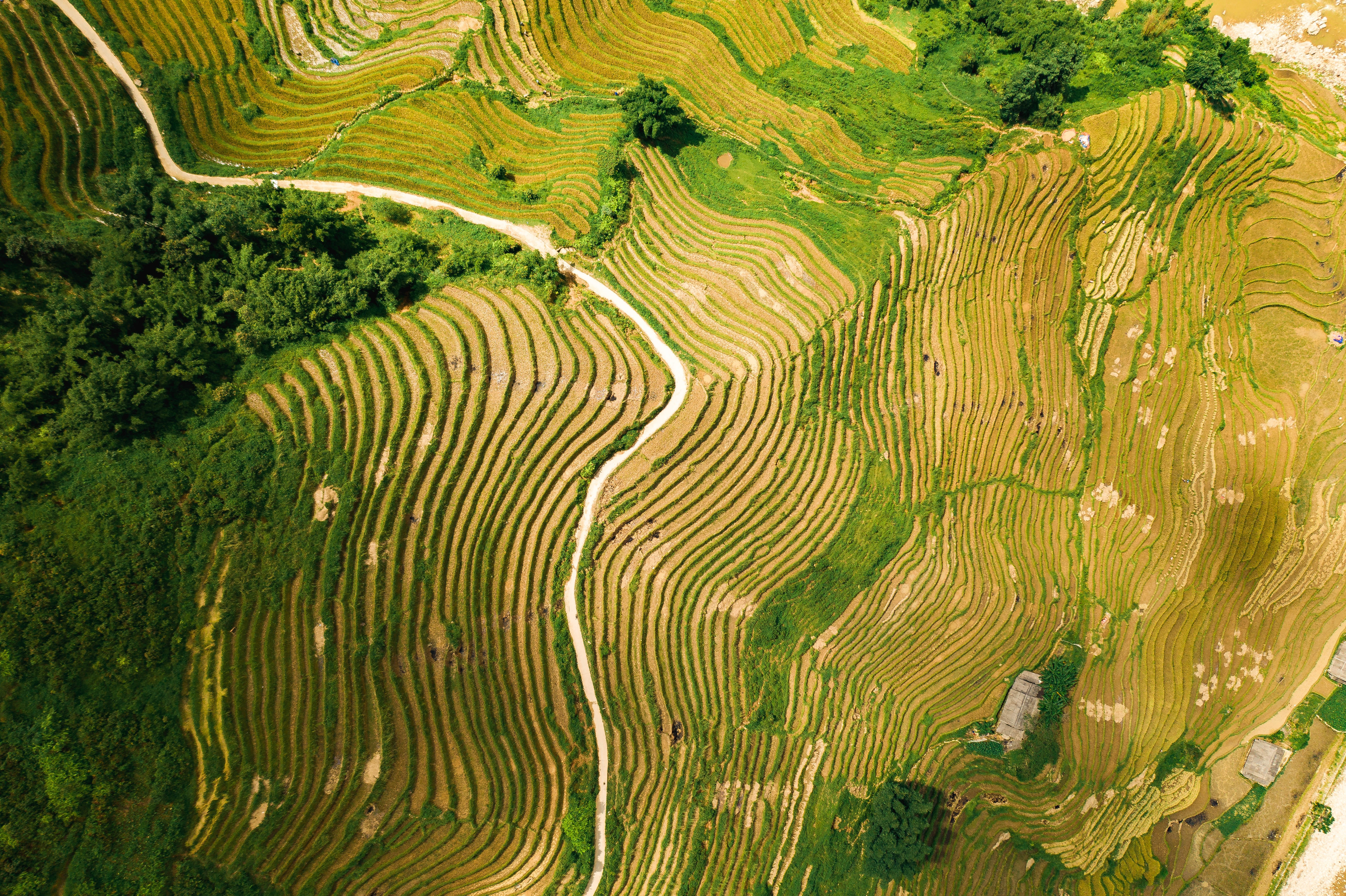 10 Best Things to do in Sapa, Vietnam