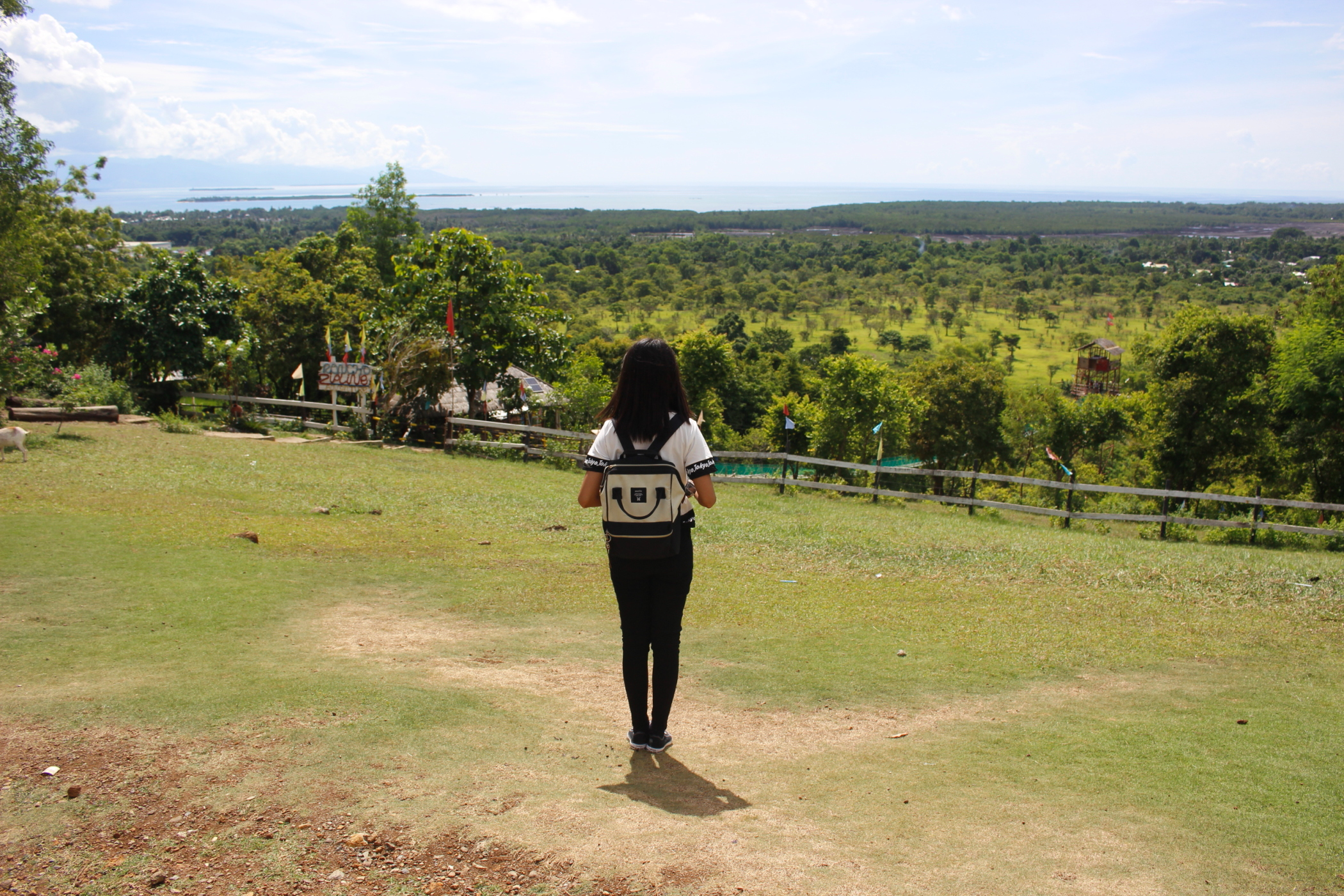 Travel Guide to Puerto Princesa, Palawan, Philippines with DIY Itinerary
