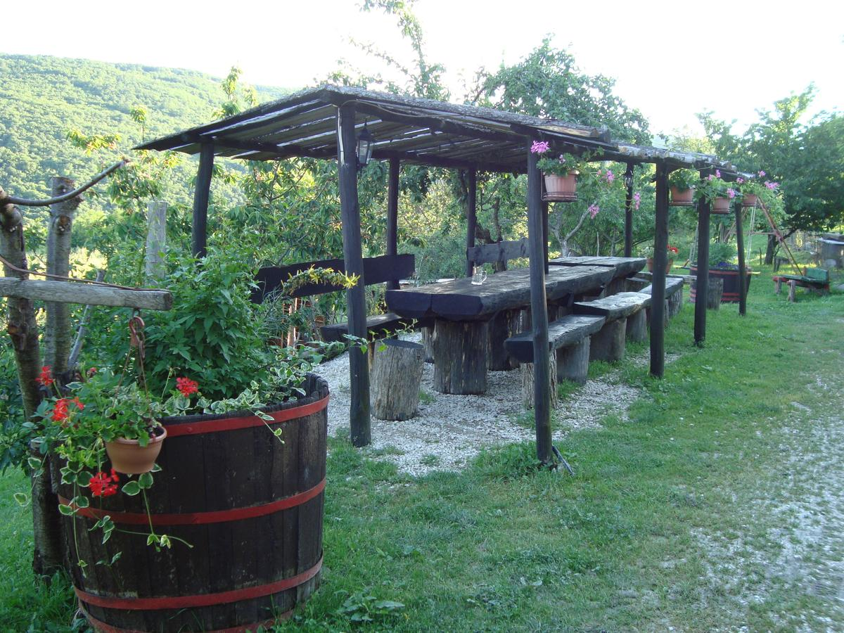 5 Best Things to do in Motovun, Croatia