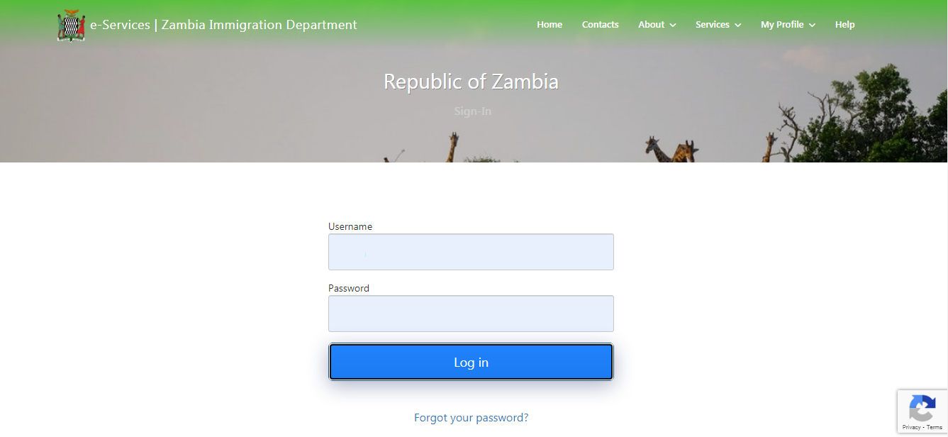 How to Get a Zambia EVisa for Filipinos and Other Nationalities 04