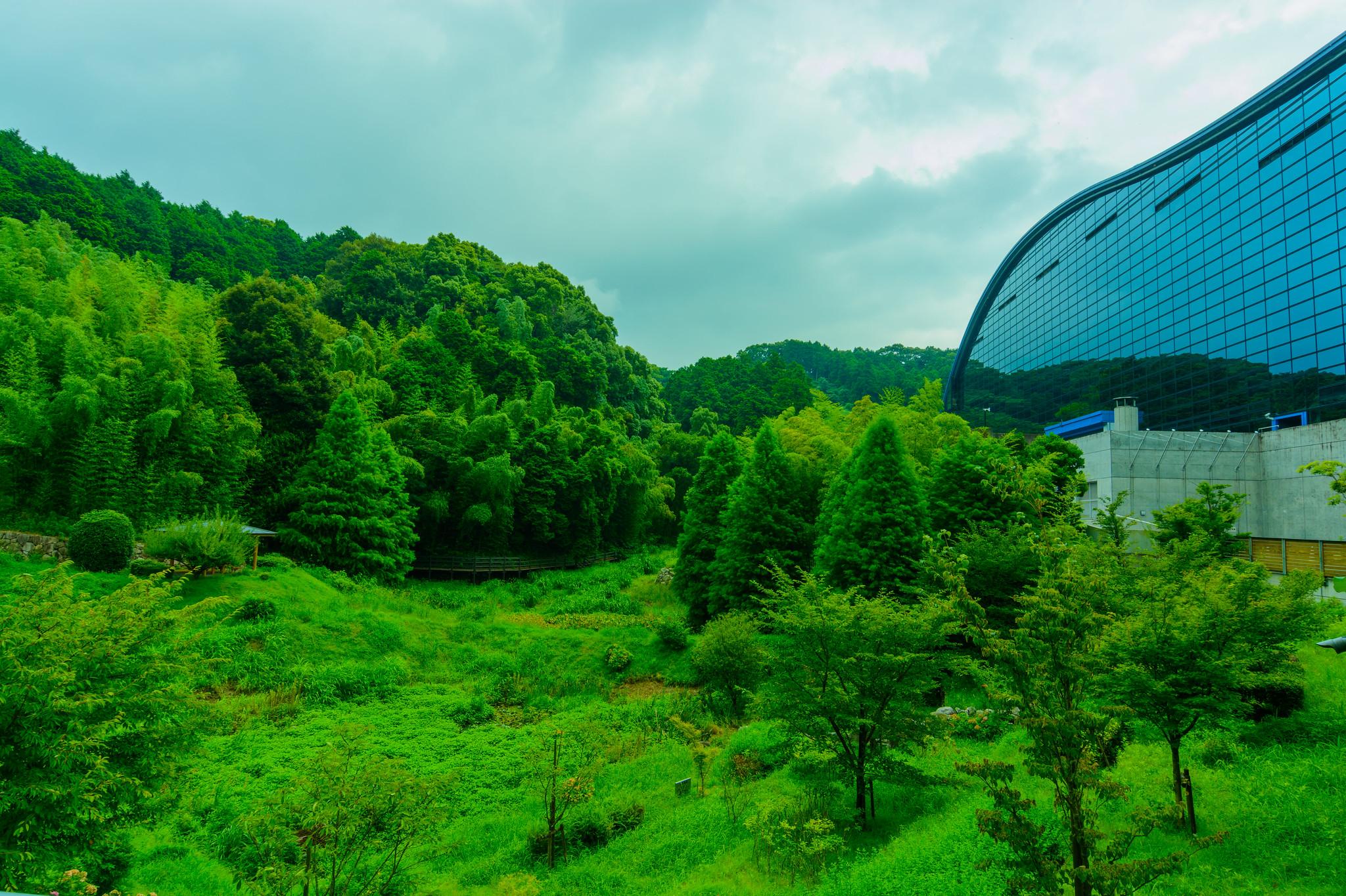 10 Things to do in Fukuoka, Japan 8