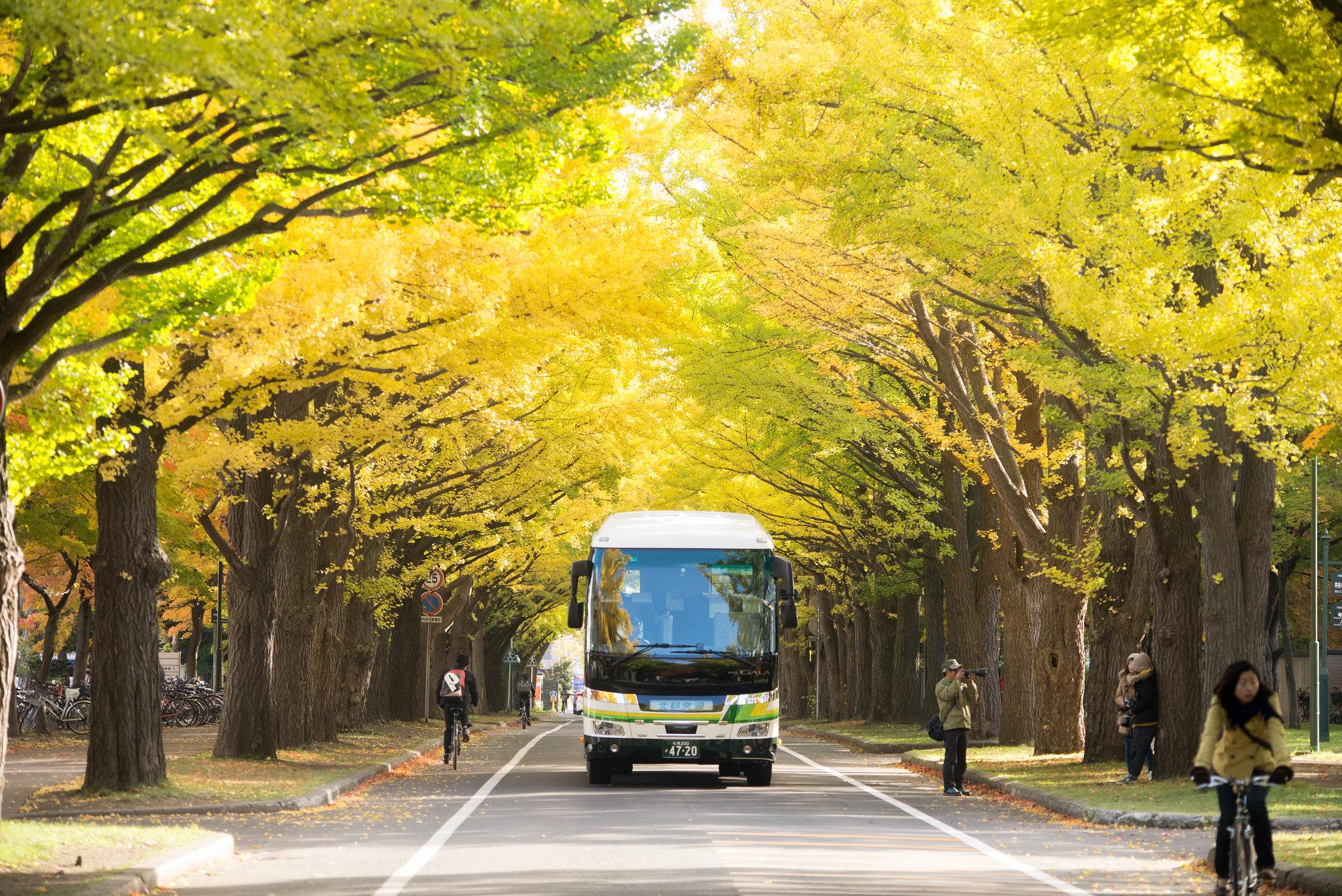 10 Things to do in Sapporo, Hokkaido, Japan 07