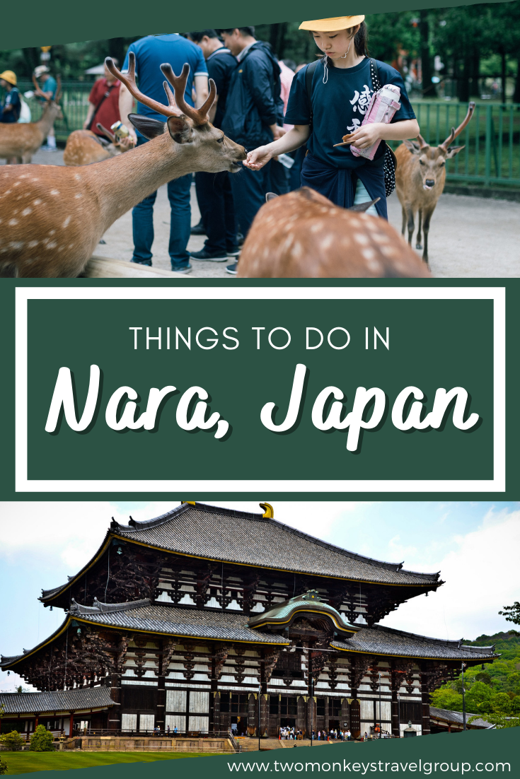 5 Things To Do in Nara, Japan [With Suggested Tours]
