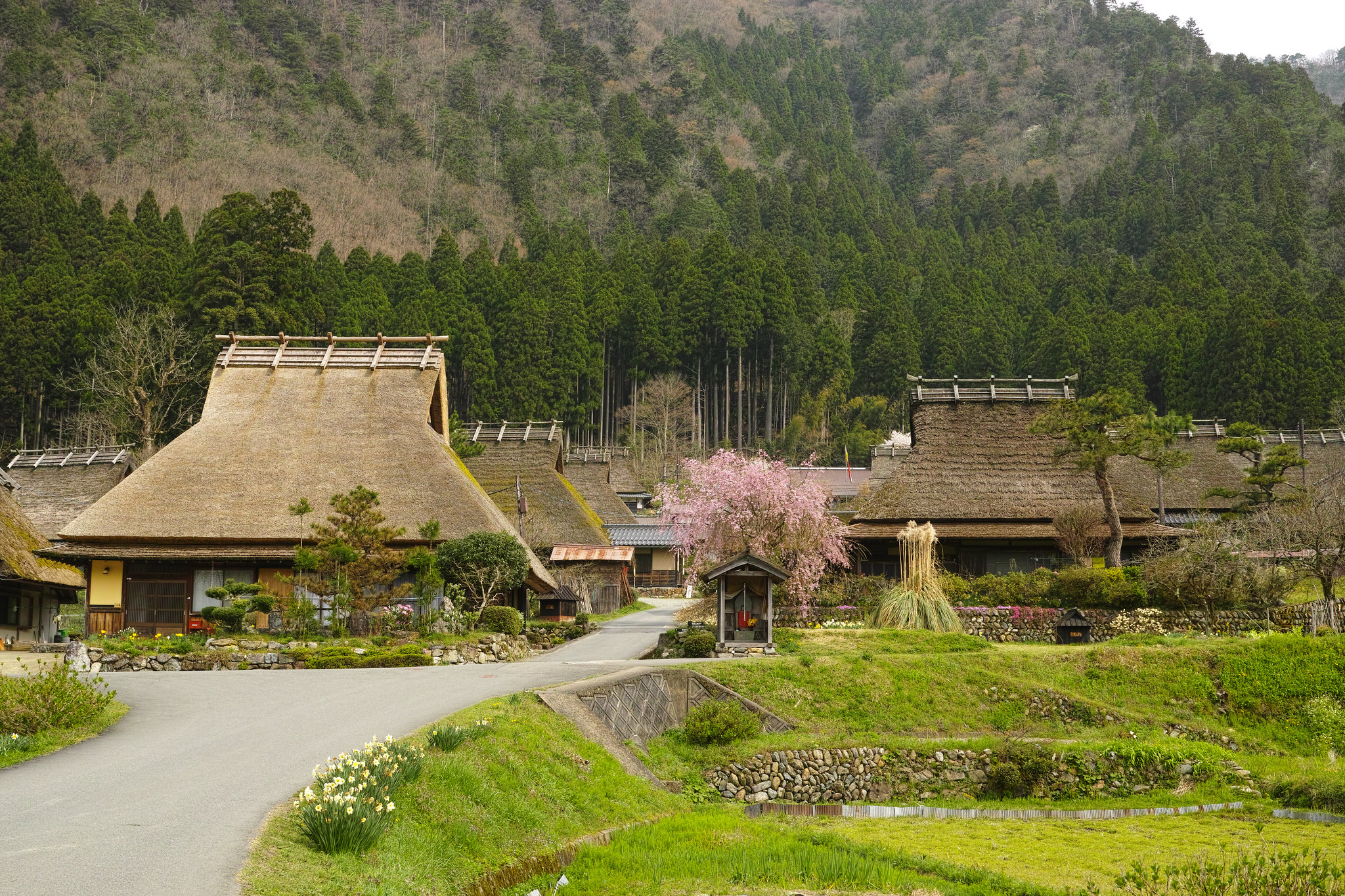 10 Things To Do In Kyoto Prefecture, Japan [with Suggested Tours] 08