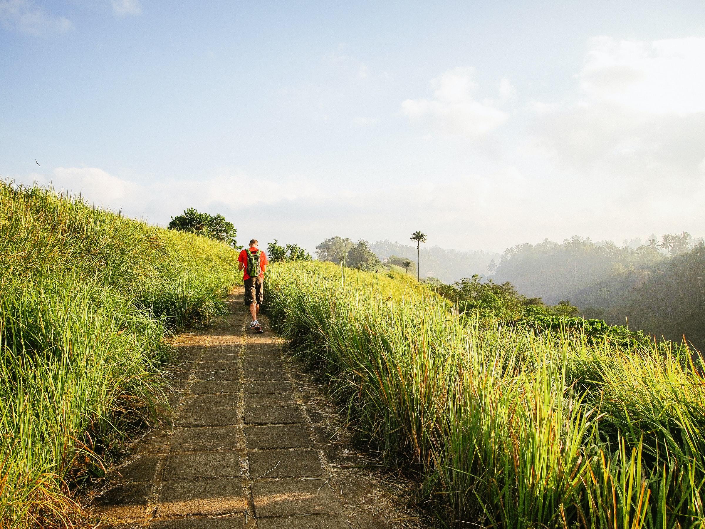 DIY Travel Guide to Ubud, Bali, Indonesia 04