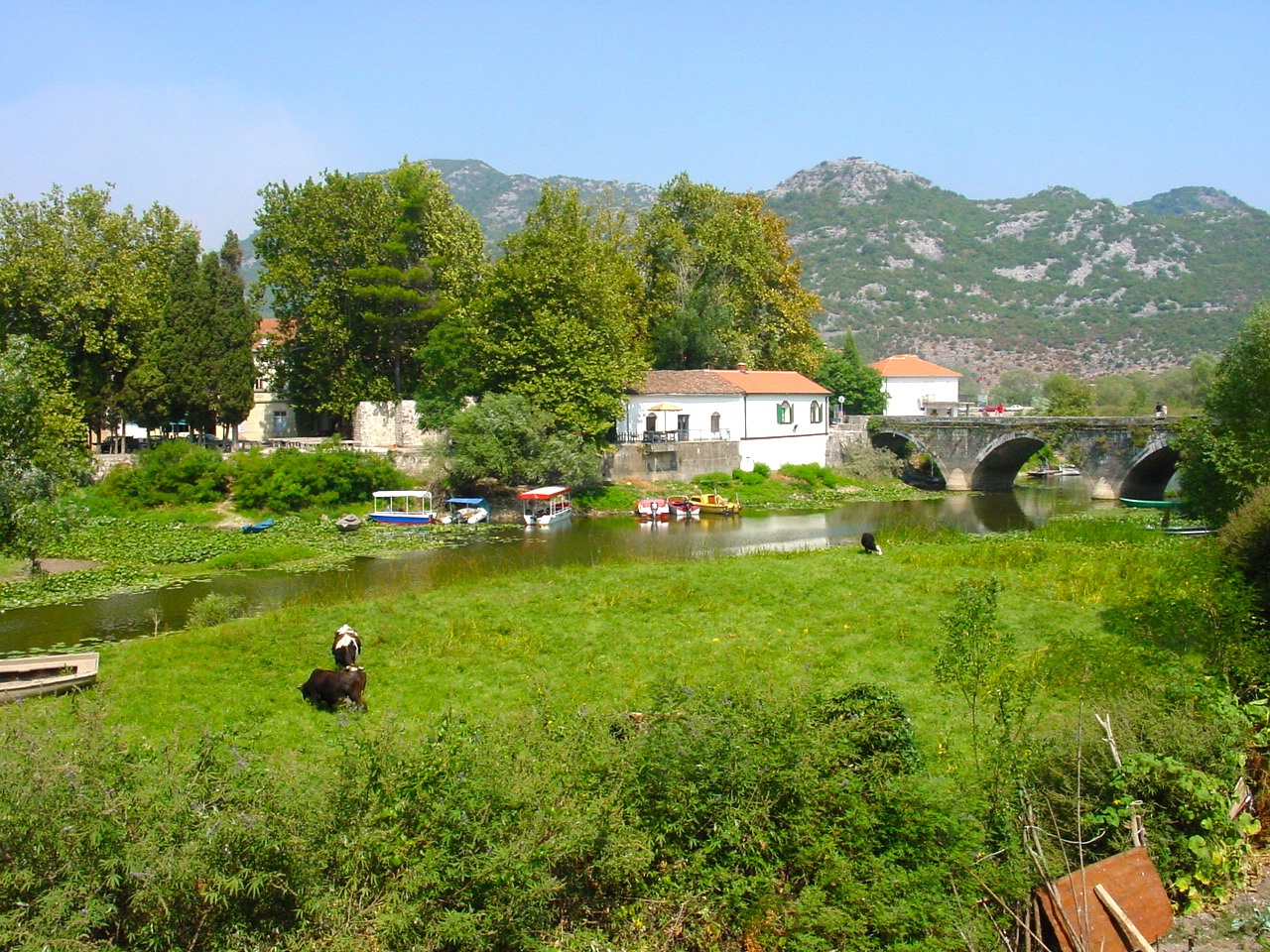 10 Day Montenegro Itinerary How to Enjoy Montenegro in 10 Days!