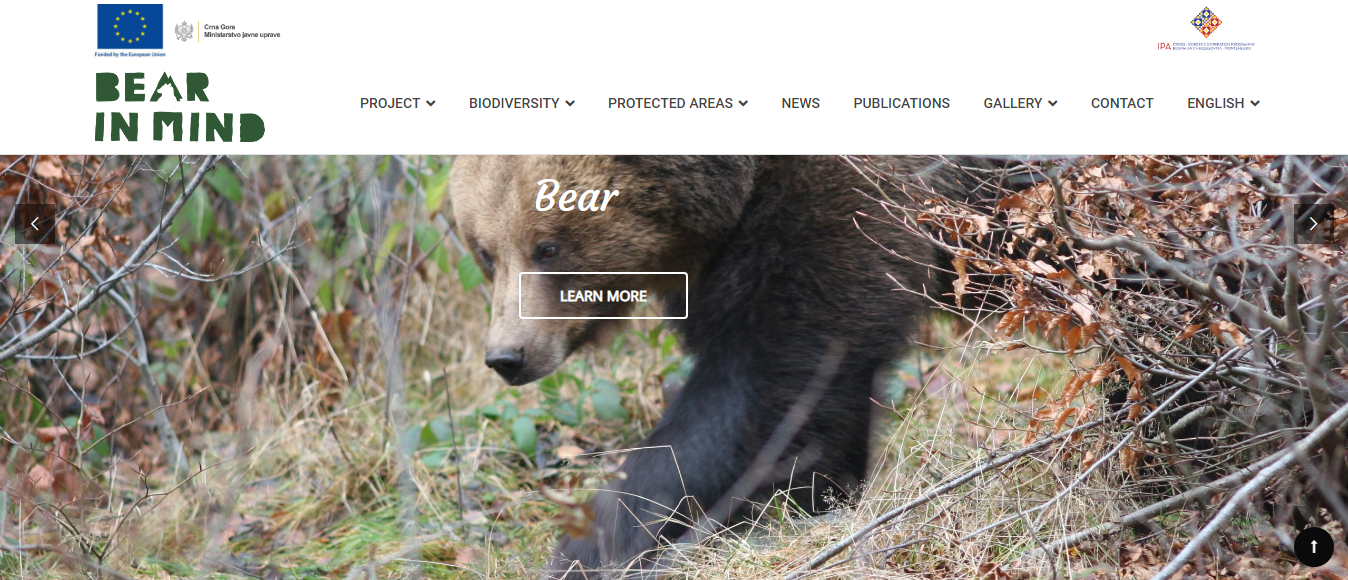 Are There Bears in Montenegro What To Do When You See One