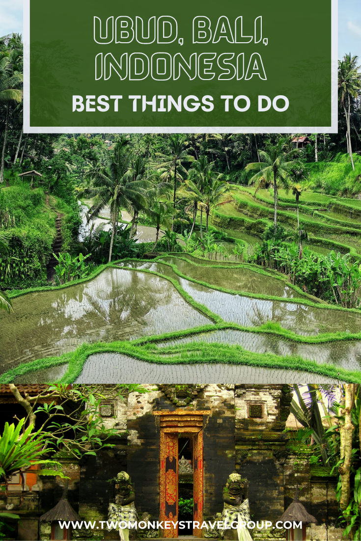 5 Best Things To Do in Ubud, Bali, Indonesia [DIY Travel Guide to Ubud]2