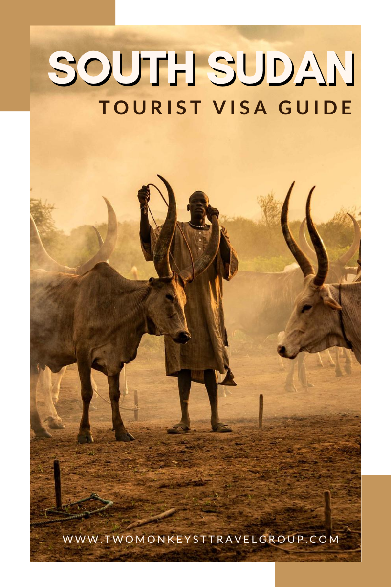How To Get Angola Tourist Visa in London for British Citizens